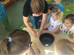 Galeria 2019.05.31 Dzień Dziecka u Motylków w Żużeli
